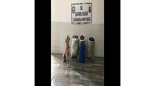 BİGA'DA CEZAEVİ FİRARİSİNE OPERASYON!